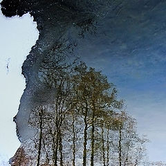 "photo ""Mirages of the winter river Churilikha - 1"""