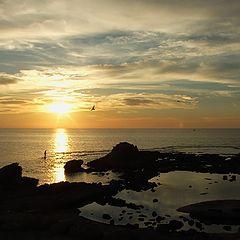 """фото """"Средиземное море. Январь."""""""