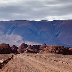 "фото ""Coming from Tolar Grande"""