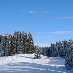 """photo """"Ski track"""""""