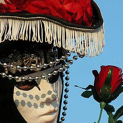 """фотоальбом """"Carnevale Venezia"""""""