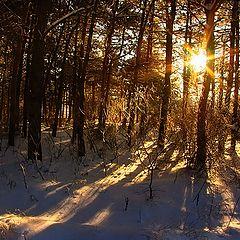 """фото """"Последний  закат уходящей зимы"""""""