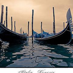 "photo ""Venezia 2010"""