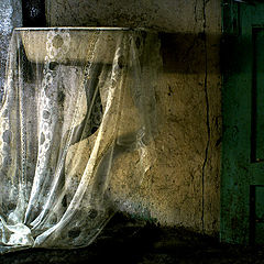 """photo """"Fallen Angels"""""""
