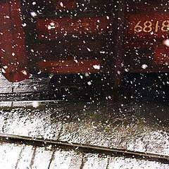 """photo """"last snowfall"""""""