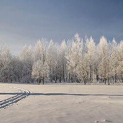 """фото """"Тень в зимний день :)"""""""