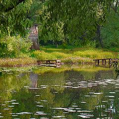 """photo """"Bridges and reflection."""""""