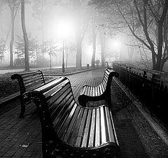 """фото """"Мариинский парк"""""""