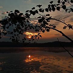 "photo ""The magic morning"""