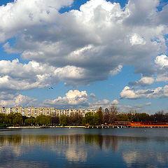 """фото """"Spring debut / Наступлением весны"""""""