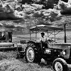 "фото ""Harvest Time"""