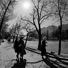 "фото ""в лучах апреля"""