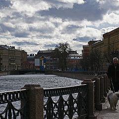 "photo ""Собачья погода"""