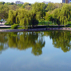 """фото """"Peaceful lake / Мирное озеро"""""""