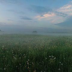 """фото """"Туманный луг"""""""