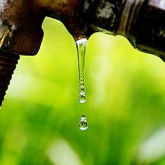 "photo ""Still Water"""