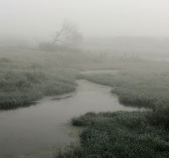 """фото """"Про туман..."""""""