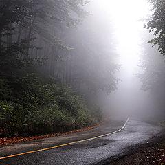"""фото """"Тишина в мъглата"""""""