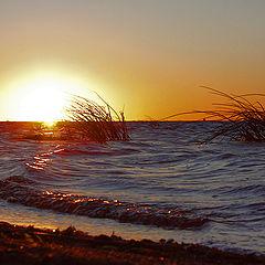 """фото """"Закат в Финском заливе."""""""