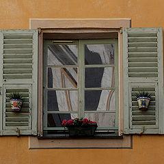 """album """"Windows"""""""
