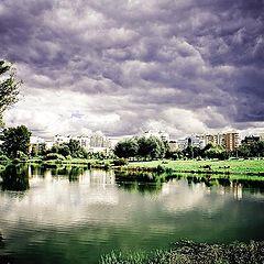 """фото """"городская природа"""""""