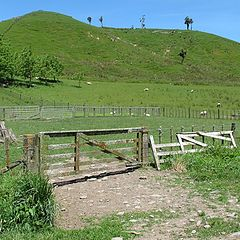 "photo ""Rural Scene -  New Zealand."""