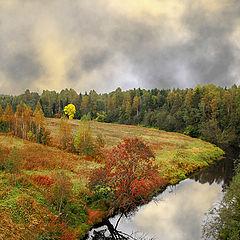 "photo ""Fall River ""Lizard"""""