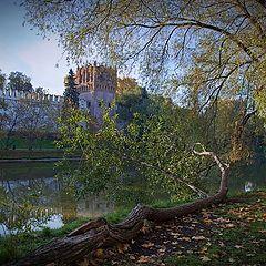 """photo """"autumn landscape"""""""