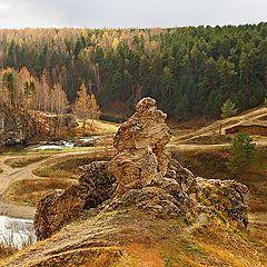 "фото ""Взгляд в долину"""