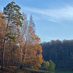 """фото """"Осенний этюд"""""""
