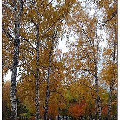 """photo """"Autumn postcard"""""""