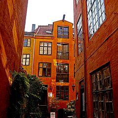 "photo ""Back Yard Copenhagen"""