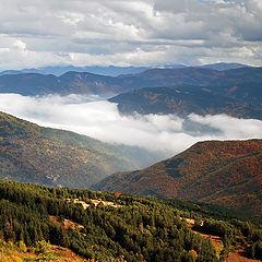 """фото """"планина  Родопи"""""""
