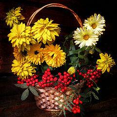 """фото """"Осеннее разноцветие"""""""