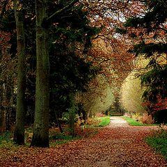"""photo """"beautiful promenade"""""""