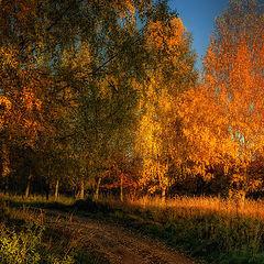 """фото """"Осенний поцелуй"""""""