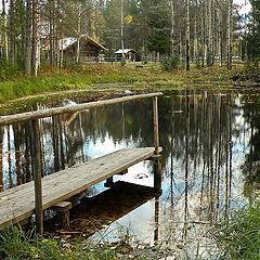"фото ""На дивном озере лесном"""