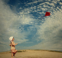 "фото ""The kite"""