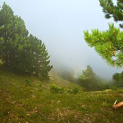 "фото ""Про маленькую радугу в туманах Ай-Петри"""