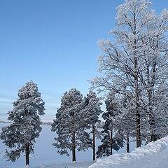 "фото ""Седая зима"""