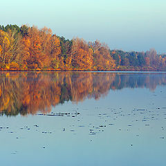 """фото """"Autumn in river"""""""