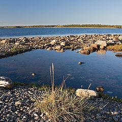 """photo """"Coast of island Solovetskiy"""""""