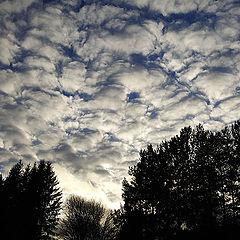 "фото ""Небесное  одеяло"""