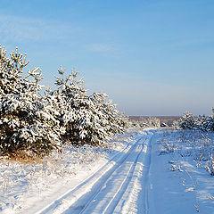 """фото """"Зимний  пейзаж"""""""