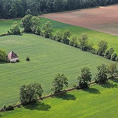 "photo ""Geometry of rural fields"""
