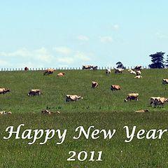 "photo ""Happy New Year"""
