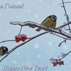 "photo ""Happy New Year!"""