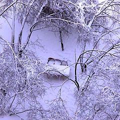 """фото """"И пришла зима"""""""