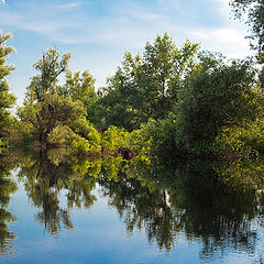 "photo ""Summer reflections over Danube river"""