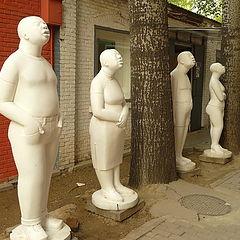 """фото """"Пекин 798."""""""